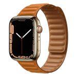 اپل واچ سری 7 , Apple Watch Series 7